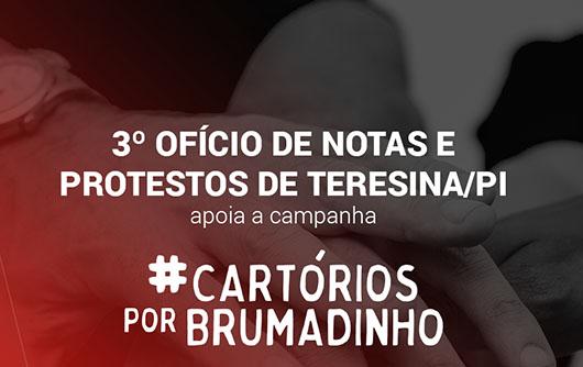 3º Ofício De Notas E Protestos De Teresina/PI Apoia A Campanha Cartórios Por Brumadinho